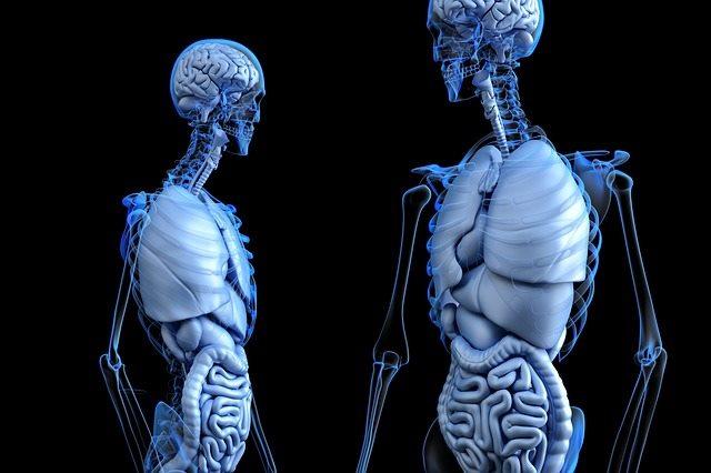 Признаки туберкулеза можно обнаружить во всех органах