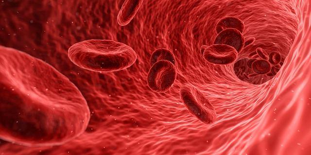 Обследование кровеносных сосудов в органах дыхания