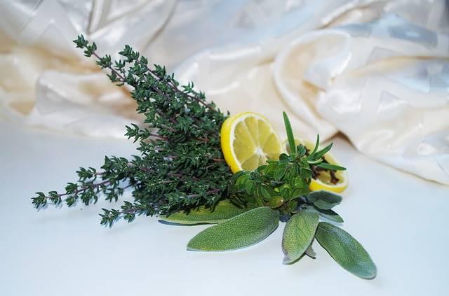 Нетрадиционные лекарства ингредиенты лимон мудрец тимьян розмарин