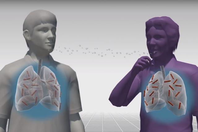 Кавернозный туберкулез процесс заражения
