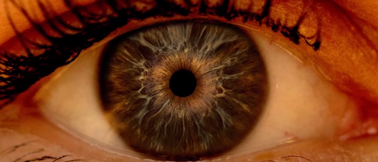 Осмотр глазного дна поможет выявить заболевание