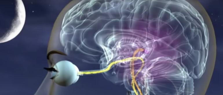 Зона перекрещивания зрительных нервов